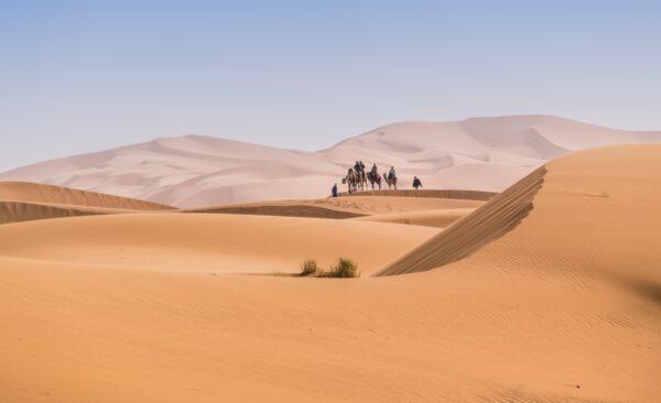 Excursion désert depuis Marrakech