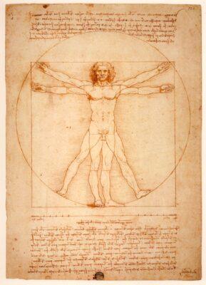 L'Homme de Vitruve à la galerie dell'Accademia