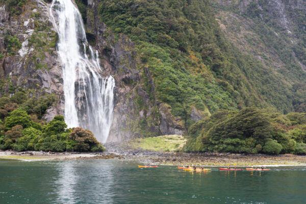 Kayak à Milford Sound