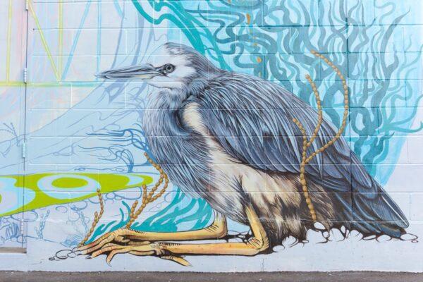 Street art à Auckland Waterfront