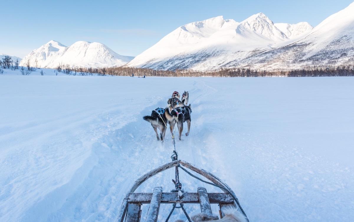Activité à Tromso
