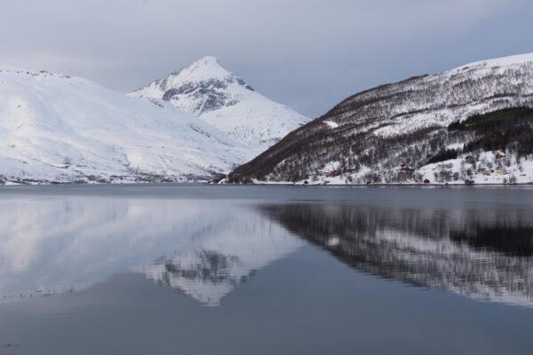 Sortie bateau à Tromso