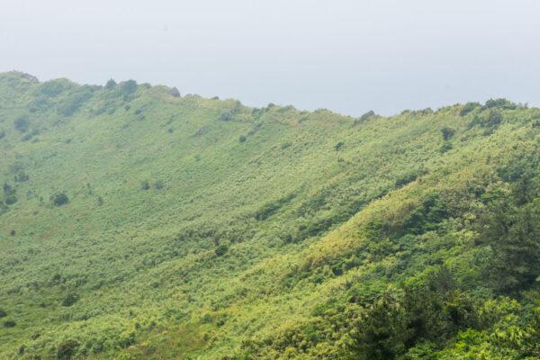 Cratère du Seongsan Ilchulbong