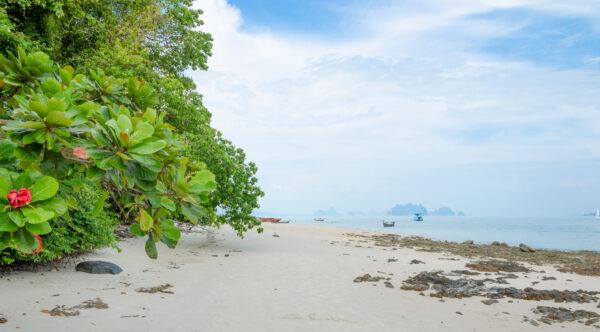 Arrêt sur l'île Naka dans la baie de Phang Nga