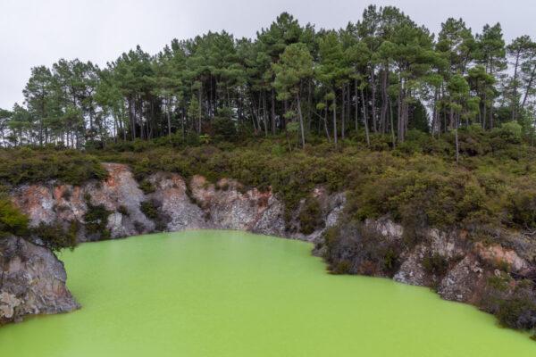 Lac dans la zone géothermique de Wai-O-Tapu à Rotorua
