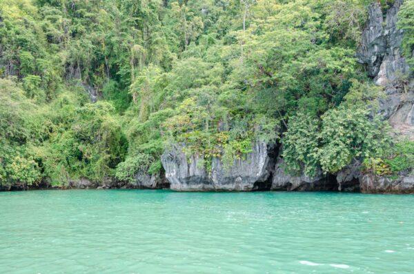 Piton rocheux et mangrove dans la baie de Phang Nga
