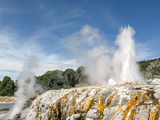 Zone géothermique de Te Puia à Rotorua