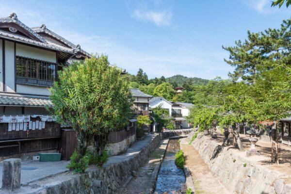 Balade sur l'île de Miyajima au Japon