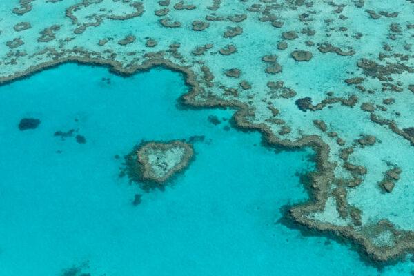 Heart Reef sur la Great Barrier Reef