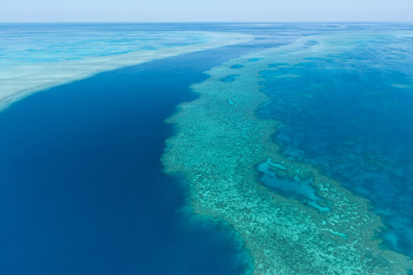 Vol au dessus de la grande barrière en Australie