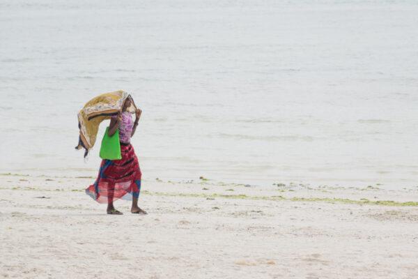 Plage de Paje à Zanzibar