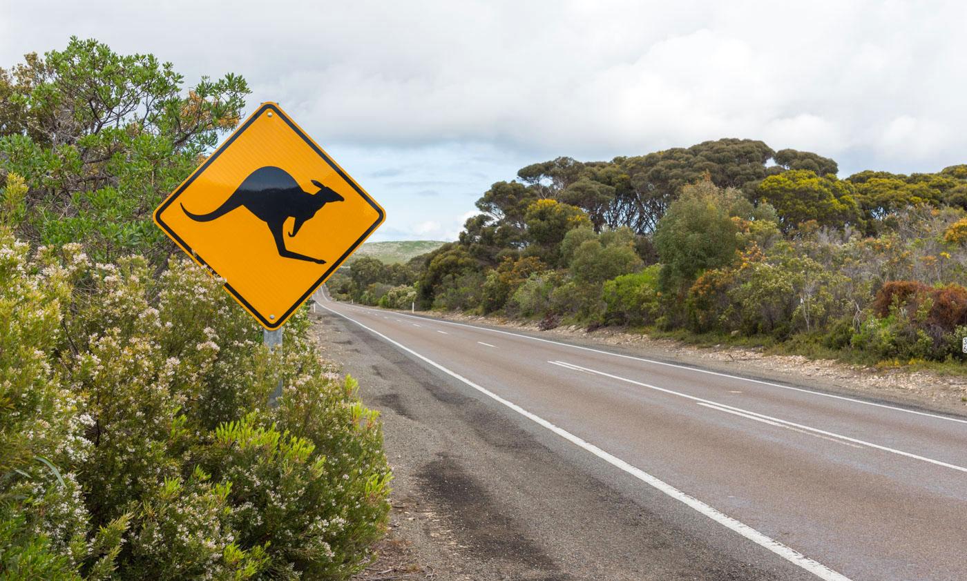 Location de van en Australie : le guide !