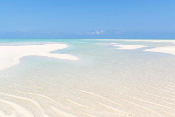 Meilleure période pour Zanzibar