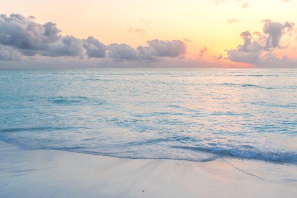 Partir à Zanzibar en voyage