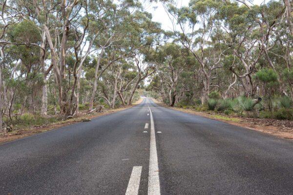 Van et camping-car en Australie
