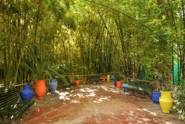 Bambouseraie du jardin Majorelle