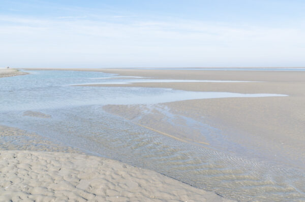 Pointe du Hourdel à marée basse, lieu d'observation des phoques