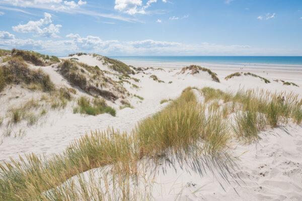 Randonnée les Crocs dans les dunes de la baie de Somme