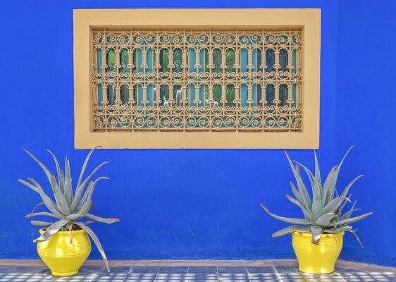 Visiter le jardin Majorelle à Marrakech