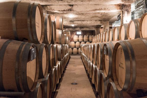 Visite d'une cave de vin de Bourgogne