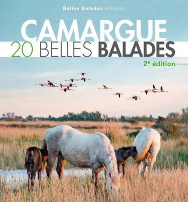 Guide de voyage en papier pour Aigues-Mortes et la Camargue