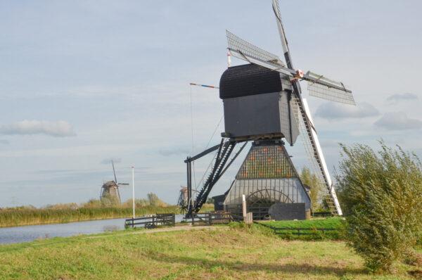 Visite du moulin Blokweer à Kinderdijk