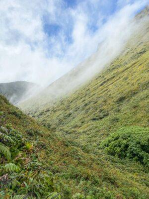 Cratère de la montagne Pelée
