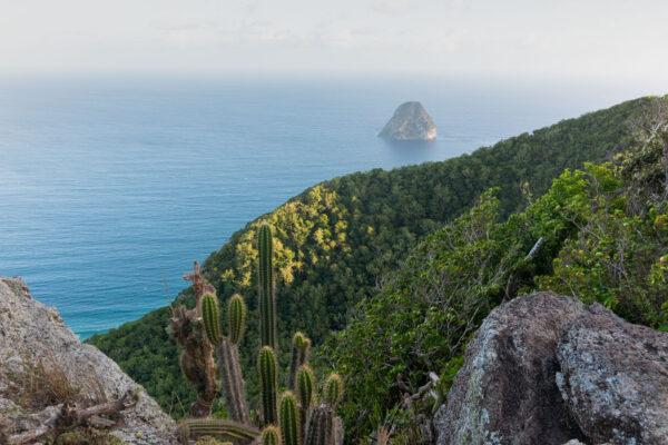 Panorama depuis le sommet du Morne Larcher