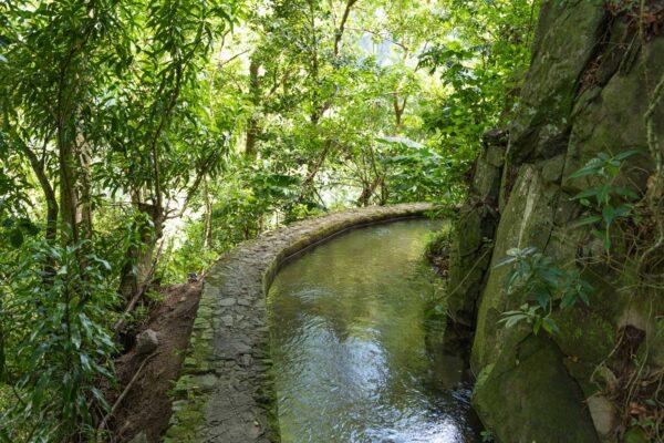 Randonnée du canal des esclaves en Martinique