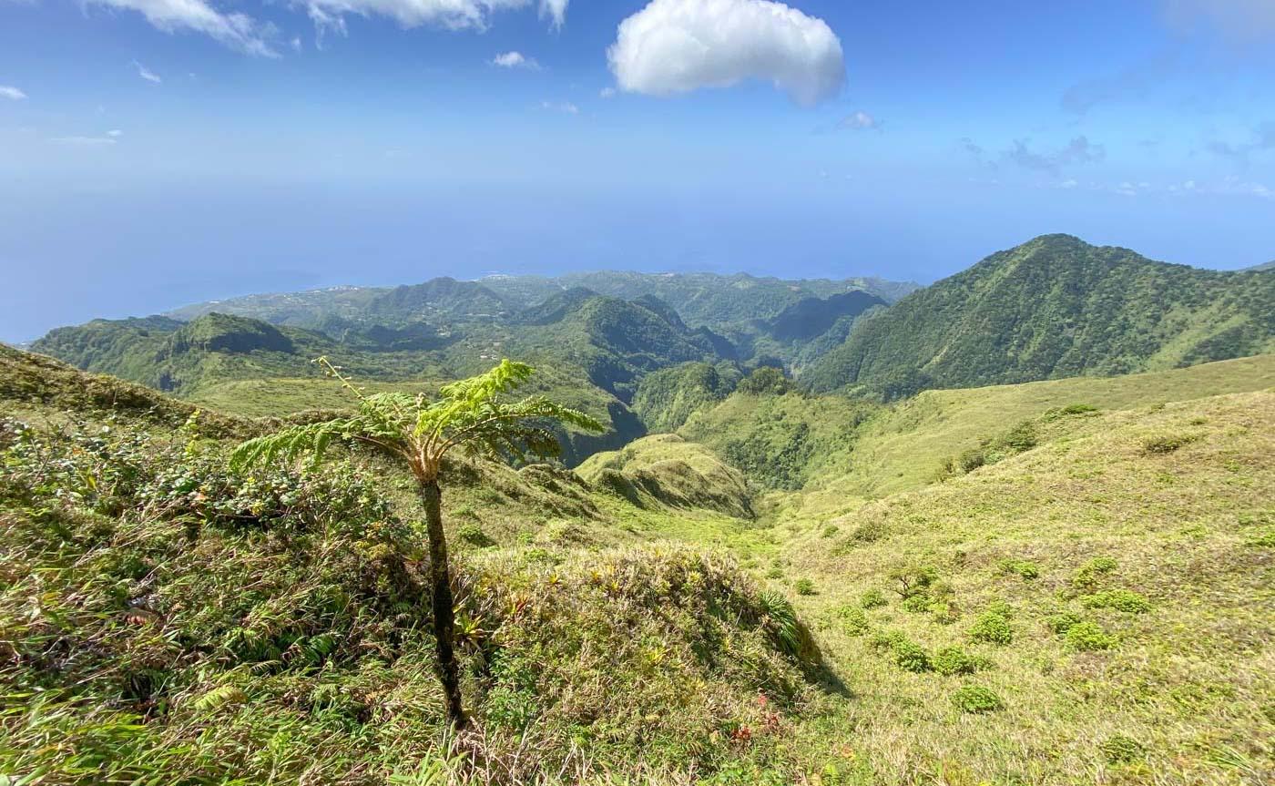 Randonnée sur la montagne Pelée en Martinique