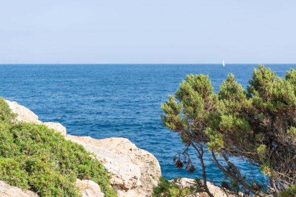 Cadre du canyoning côtier à Majorque