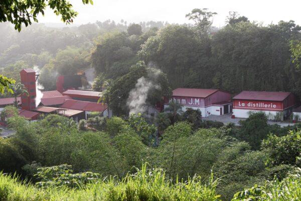 Visite de la rhumerie JM à Macouba en Martinique