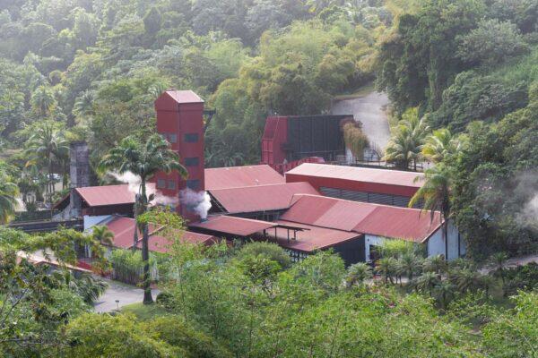 Visite d'une rhumerie en Martinique