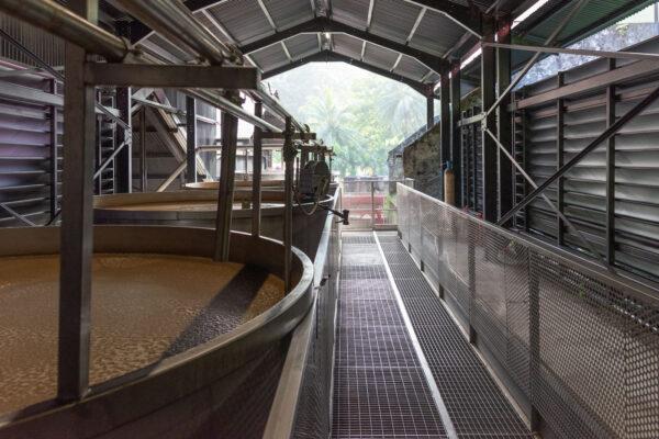 Visiter une distillerie de rhum en Martinique